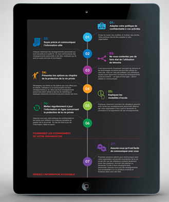 Privacy Commissioner of Canada,     Data Visualisation     Infographics     Information Design, Latest Work, Print , Public Sector, Strategy